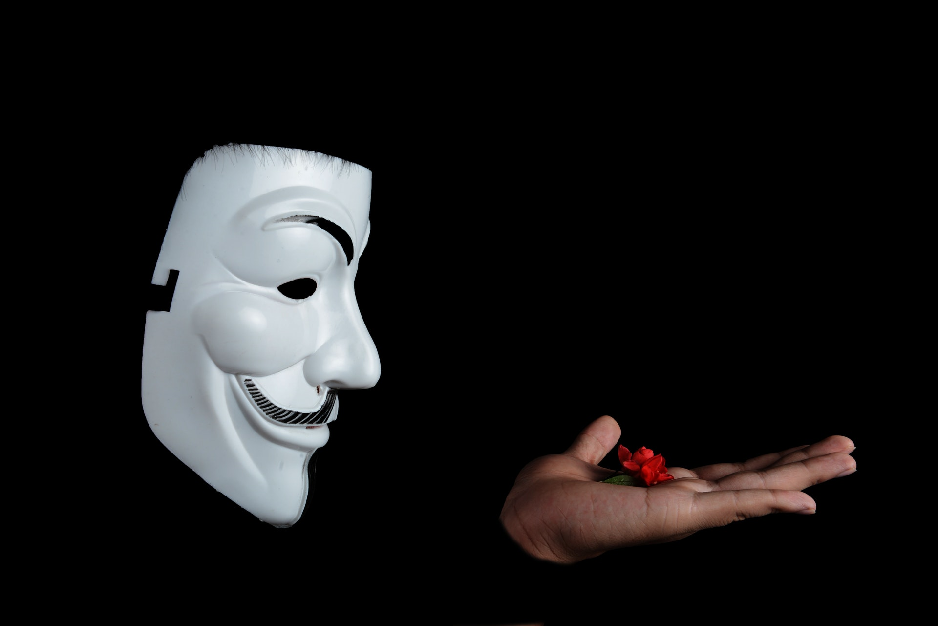guy-fawkes-mask-with-red-flower-on-top-on-hand